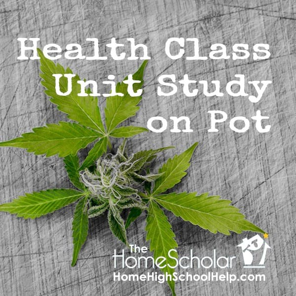 Health Class Unit Study on Pot